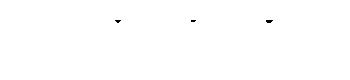 Logo blanc Mãe Do Santo